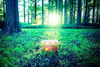 森の中の宝箱