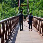 吊り橋のカップル